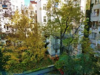 Few steps from Schwarzenbergplatz - Vienna vacation rentals