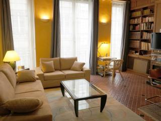 ILE SAINT-LOUIS + Airp pick-up service (on demand) - Paris vacation rentals
