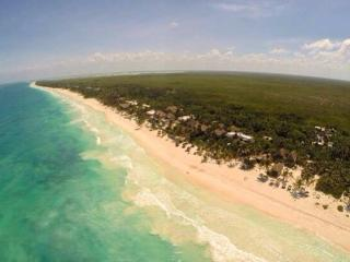 Agua Eco Design Beach Hotel - Tulum vacation rentals