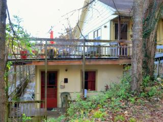 Nice Condo with Deck and Microwave - Eureka Springs vacation rentals