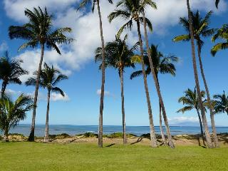 Oceanfront 1 Bed 1 Bath Condo in Central Kihei (20 - Kihei vacation rentals