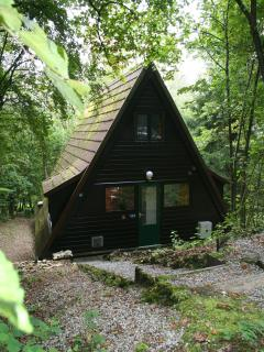 Ardennenhuisje163 Sunclass Durbuy - Durbuy vacation rentals
