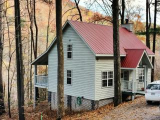 North Georgia Mountain Cabin - Serenity & Hi Tech - Blairsville vacation rentals