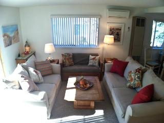 Ocean Edge Lovely Patio Style with A/C & Pool (fees apply) - SU0053 - Brewster vacation rentals