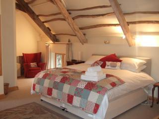 The Shippon, Widecombe in the Moor, Dartmoor - Widecombe in the Moor vacation rentals
