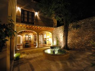 Nice House with Internet Access and A/C - San Miguel de Allende vacation rentals