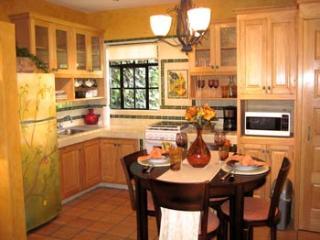 Condo Dolce Vita - San Miguel de Allende vacation rentals