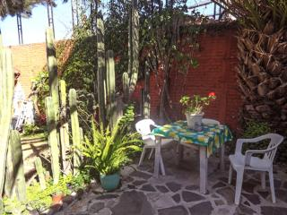 Nice House with Internet Access and Garden - Dolores Hidalgo vacation rentals