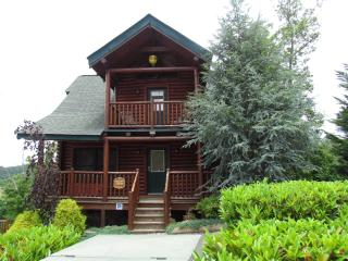 Memory Maker Luxury Log Cabin, w/pool access - Sevierville vacation rentals