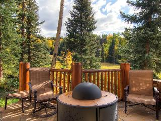 A true 24 karat home - Ski in/out, private hot tub - Golden Antler Lodge - Mountain Village vacation rentals
