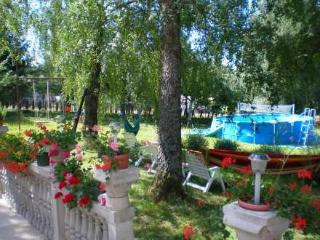 Villa, Novi Vinodolski ~ RA31137 - Kvarner and Primorje vacation rentals