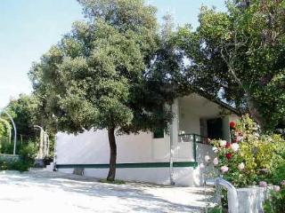 House, Petrčane ~ RA31380 - Petrcane vacation rentals