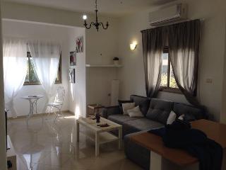 Center Of Tel-Aviv-Hoshe'a St. - Tel Aviv vacation rentals