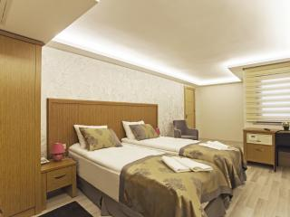 Very Central Studio - 203 - Istanbul & Marmara vacation rentals