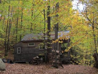 Thoreau's Eco-Cabin in Maine Woods - Denmark vacation rentals
