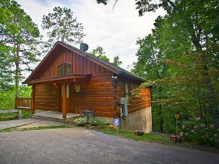 Secluded 2 Bedroom 6 miles to Downtown Pigeon Forge TN/Wears Valley - Sevierville vacation rentals