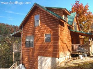 4 Bedroom Gatlinburg Cabin Close to Ober Ski Resort on Ski Mountain Road - Gatlinburg vacation rentals