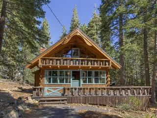 Cozy Cabin with Deck and Internet Access - Homewood vacation rentals