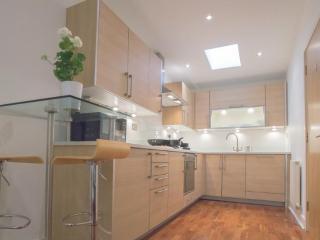 Modern 1 Bedroom Apartment in Waterloo / Southwark - London vacation rentals