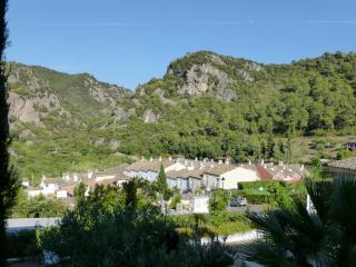 El Casar Luxury Apartments - Benahavis vacation rentals
