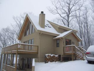Ski In Ski Out View of Slopes - Roseland vacation rentals