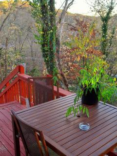 Cozy Condo with Short Breaks Allowed and Long Term Rentals Allowed - Eureka Springs vacation rentals