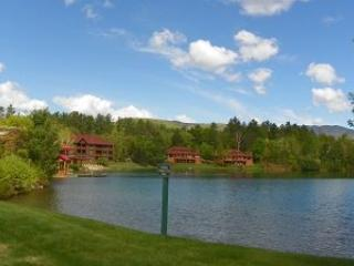 Deer Park Vacation Rental Close to Many NH Attractions!! - White Mountains vacation rentals