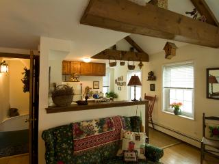 Bird House Suite (M802)  (Winter Special!) $114/ni - Boston vacation rentals