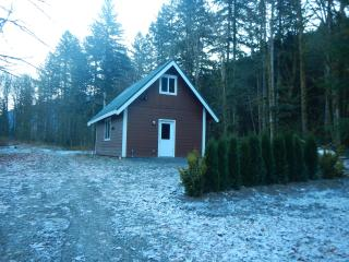 The LTC, a cozy cabin in the woods at Mt. Baker. - Glacier vacation rentals