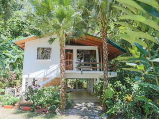 EXOTIC ESCAPE, 3BR RAINFOREST HOME, GATED COMMUNIT - Manuel Antonio National Park vacation rentals