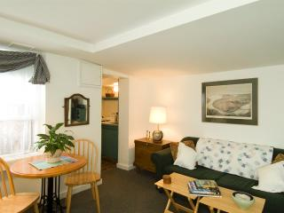 Monument House Furnished Apartment (M466) - Boston vacation rentals