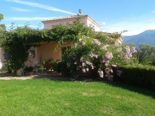 Charming 1 bedroom Bed and Breakfast in Bastelicaccia - Bastelicaccia vacation rentals