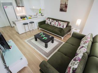 YENIBOSNA DAILYRENT LUXARY APARTMENT - Istanbul vacation rentals