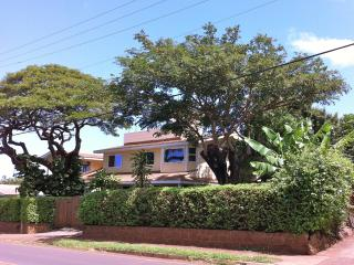 Villa Parthenope Maui Charming Studio in Paia - Paia vacation rentals