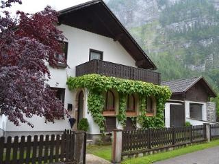 Charming House with Garden, Sauna & Garage - Hallstatt vacation rentals