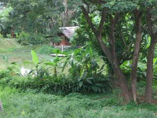 A Peaceful Cosy Place in Chiang Mai - Chiang Mai vacation rentals