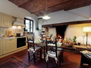 FOCOLARE Apartm. in Chianti Farmhouse - Montespertoli vacation rentals