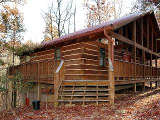 2 bed large cabin, Game Room, Flat Screens, between Gatlinburg & Pigeon Forge - Sevierville vacation rentals