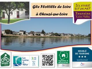 Gîte Flottille de Loire entre Touraine & Anjou - Chouze-sur-Loire vacation rentals