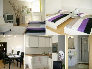 Nice Condo with Internet Access and Dishwasher - Rottenburg am Neckar vacation rentals