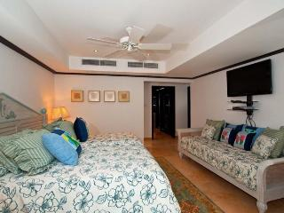 Coral Cove 3 - Green Flash - Saint James vacation rentals