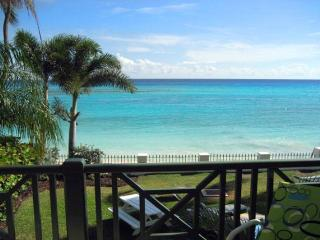 Leith Court 3 - Maxwell vacation rentals