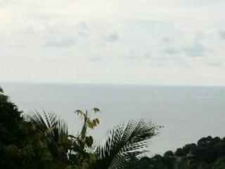 Family Sea View - Salad Villa - Image 1 - Koh Phangan - rentals