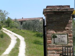 Poggio Al Pino Beautiful 13th Century Luxury Villa - Pievasciata vacation rentals
