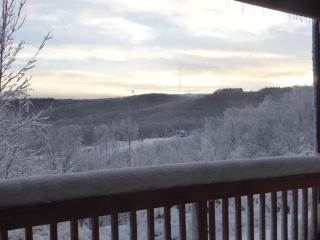 Winterplace Condo - Ski in Ski Out - First Floor!! - Athens vacation rentals