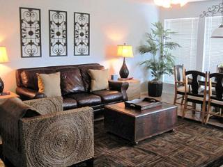 Gorgeous Condo with Internet Access and Satellite Or Cable TV - New Braunfels vacation rentals
