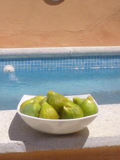 Take a deep breath . . . spectacular views - Algarinejo vacation rentals