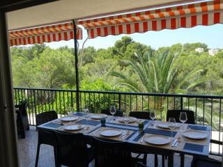 Contemporary newly renovated beachside apartment - Santa Ponsa vacation rentals