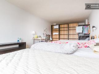 Spacious Room with Manhattan View - Jersey City vacation rentals