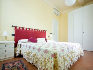 ANGUILLARA - lovely big flat in Florence's heart - Florence vacation rentals